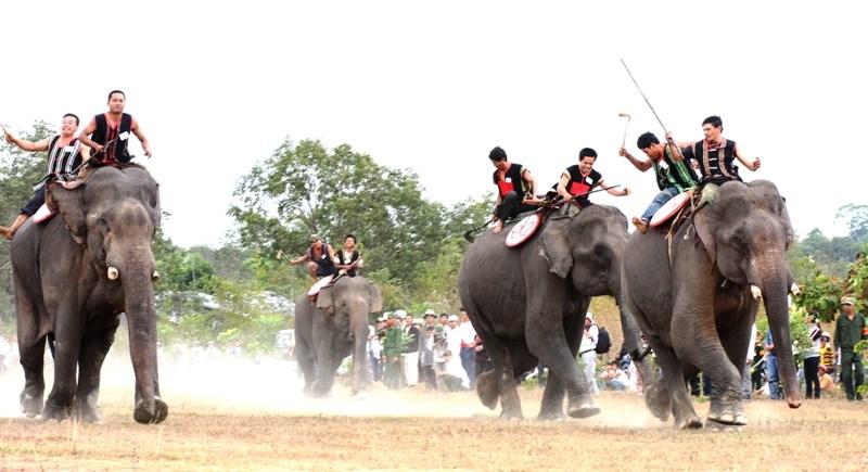 Đánh cồng chiêng cổ vũ cho ngày hội đua voi ở Bản Đôn