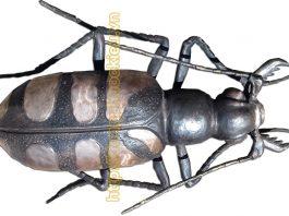 Đúc côn trùng bằng đồng trang trí cực đẹp - hinh 2